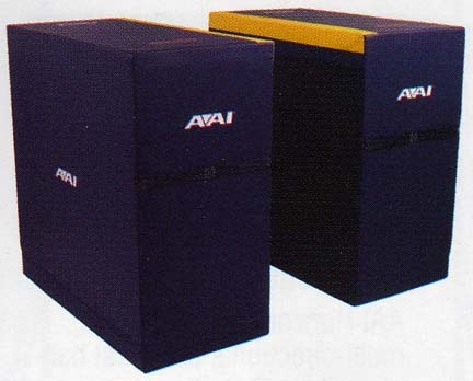 Parallel Bar Blocks from American Athletic, Inc.