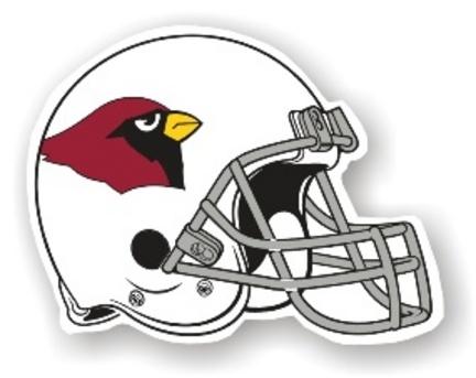 Arizona Cardinals 12