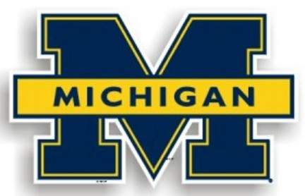 """Michigan Wolverines 12"""" Car Magnets - Set of 2"""