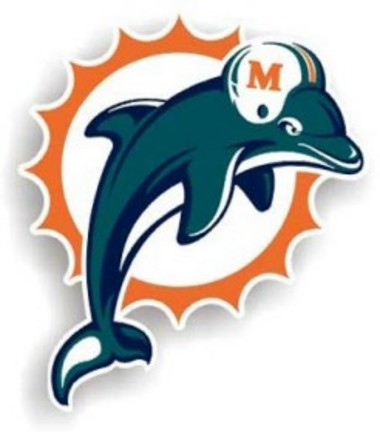 Miami Dolphins Car Magnets Price Compare