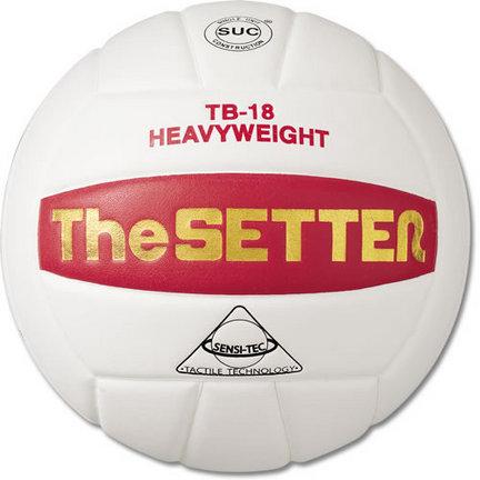 "Tachikara ""The Setter - Training"" Heavyweight Volleyball"