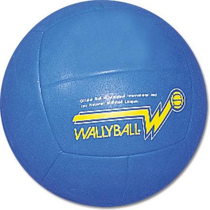 Official Wallyball® Ball