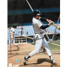 "Bucky Dent Autographed ""Swing In Batting Cage"" New York Yankees 8"" x 10"" Photo"