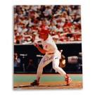 "Lenny Dykstra Philadelphia Phillies Autographed 16"" x 20"" Photograph (Unframed)"