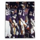 "Gary Larsen Minnesota Vikings Autographed 16"" x 20"" Photograph (Unframed)"
