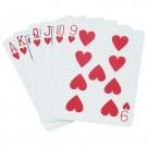 Standard Pinochle Playing Cards (1 Dozen)