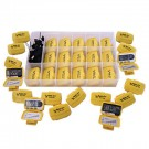 Bee-Fit Worker Bee Pedometer Class Pack by