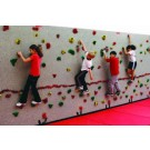 10' H x 4' W Standard Climbing Wall Panel With 25 Groperz Hand Holds from Everlast Climbing