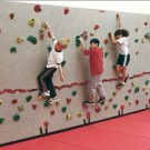 8' H x 40' W Standard Climbing Wall With 200 Groperz Hand Holds from Everlast Climbing