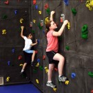 8' H x 20' W Superior Rock Traverse Climbing Wall with 100 Hand Holds from Everlast Climbing
