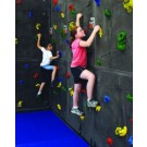 8' H x 4' W Superior Rock Traverse Climbing Wall Panel with 20 Hand Holds from Everlast Climbing