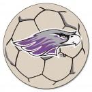 "Wisconsin (Whitewater) Warhawks 27"" Round Soccer Ball Mat"