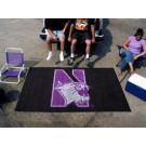 Northwestern Wildcats 5' x 8' Ulti Mat
