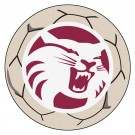 "27"" Round California State (Chico) Wildcats Soccer Mat"