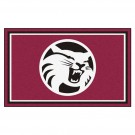 California State (Chico) Wildcats 4' x 6' Area Rug