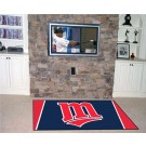Minnesota Twins 4' x 6' Area Rug
