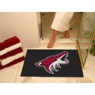 "Phoenix Coyotes 34"" x 45"" All Star Floor Mat"
