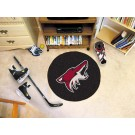 "Phoenix Coyotes 27"" Round Puck Mat"
