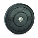 25 lb. Solid Rubber Plates - 1 Pair
