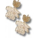 "Kentucky Wildcats 3/8"" ""UK Wildcat"" Post Earrings - 14KT Gold Jewelry"