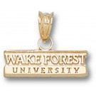 """Wake Forest Demon Deacons Bar """"Wake Forest University"""" Pendant - 14KT Gold Jewelry"""