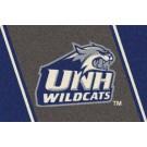 "New Hampshire Wildcats 2'8"" x 3'10"" Team Spirit Area Rug"