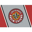 "Louisiana (Lafayette) Ragin' Cajuns 22"" x 33"" Team Door Mat"