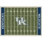 "Kentucky Wildcats 7' 8"" x 10' 9"" NCAA Home Field Area Rug by"