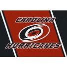 "Carolina Hurricanes 2' 8"" x 3' 10"" Team Spirit Area Rug"