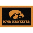 Iowa Hawkeyes 5' x 8' Team Door Mat by