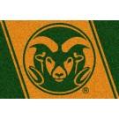 Colorado State Rams 5' x 8' Team Door Mat by