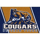 Brigham Young (BYU) Cougars 5' x 8' Team Door Mat by