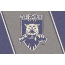 "Weber State Wildcats 22"" x 33"" Team Door Mat"