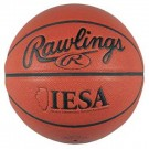 Rawlings Official IESA Basketball by