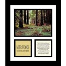 "Muir Woods National Monument 13"" x 11"" Framed Photograph (NP79A-0C8)"