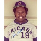 """Bill Madlock Autographed Chicago Cubs 8"""" x 10"""" Photograph (Unframed)"""