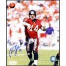 "Brad Johnson Autographed ""Action"" 8"" x 10"" Photograph (Unframed)"