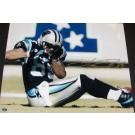 "Steve Smith ""On the Field"" Autographed Carolina Panthers Action 16"" x 20"" Photograph Steve Smith Authenticity (Unframed)"