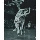 "Tom Heinsohn Autographed Boston Celtics 8"" x 10"" Photograph Hall of Famer (Unframed)"