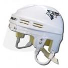 Nashville Predators Official NHL Mini Player Helmet (White) by