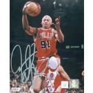 """Dennis Rodman Autographed """"Bulls Rebounding"""" 16"""" x 20"""" Photograph (Unframed)"""
