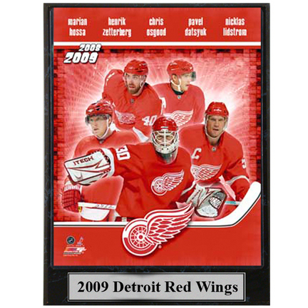 """2009 Detroit Red Wings Photograph Nested on a 9"""" x 12"""" Plaque"""
