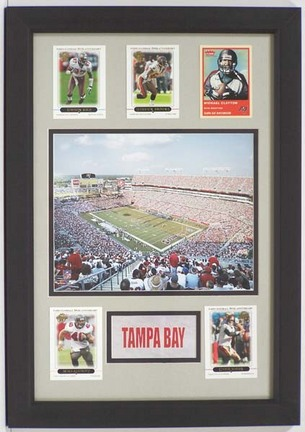 """Tampa Bay Buccaneers Raymond James Stadium Photograph with 5 Trading Cards in a 12"""" x 18"""" Deluxe Frame"""