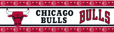 Chicago Bulls 5
