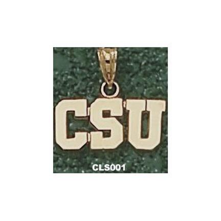 """Cleveland State Vikings """"CSU"""" Lapel Pin - Sterling Silver Jewelry"""