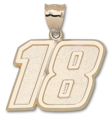 Kyle Busch Giant Driver Number 18 1 12 Pendant  14KT Gold Jewelry