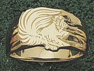 "Iowa Hawkeyes ""Tiger Hawk"" 1/2"" Lapel Pin - Sterling Silver Jewelry"