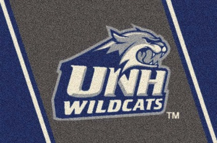 "New Hampshire Wildcats 7' 8"" x 10' 9"" Team Spirit Area Rug"