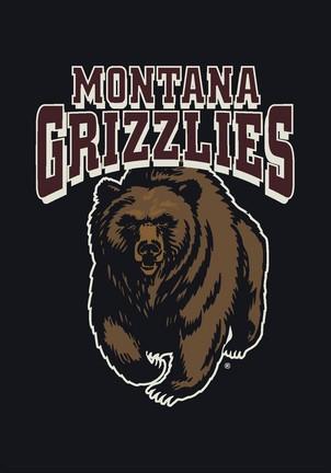 "Montana Grizzlies 5'4""x 7' 8"" Team Spirit Area Rug"
