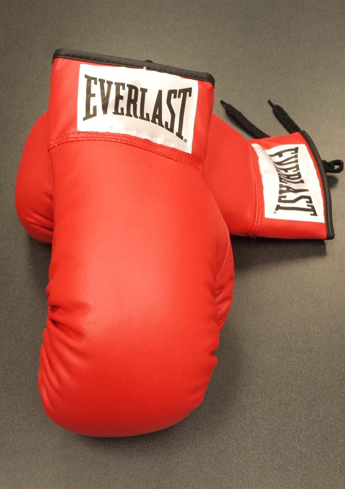 Everlast Leather Boxing Gloves - 1 Pair